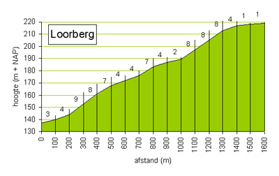 De Loorberg shuffle - Frank Lammers